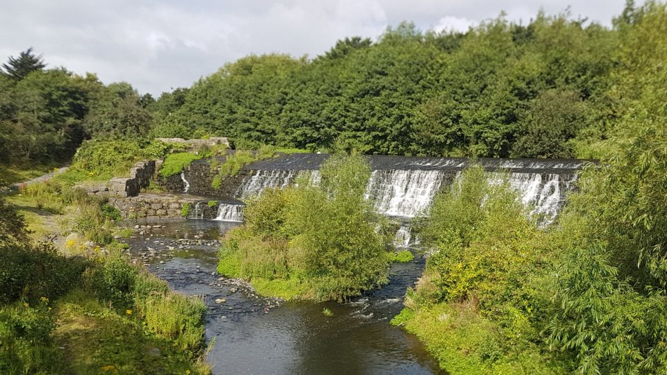 Dodder Weir